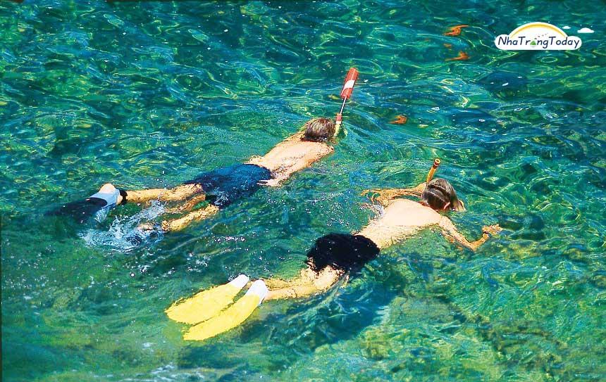 bơi ngắm san hô tại Hòn Mun Nha Trang